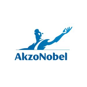 Акзо-Нобель декор